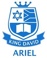 king-david-ariel.png